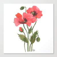 poppies Canvas Prints featuring POPPIES by Oana Befort