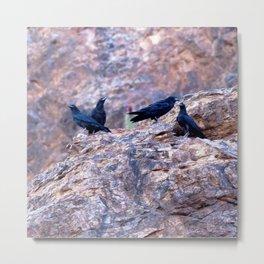 Watercolor Bird, Crow 01, Ventana Canyon, Arizona, Murderous Discussions Metal Print