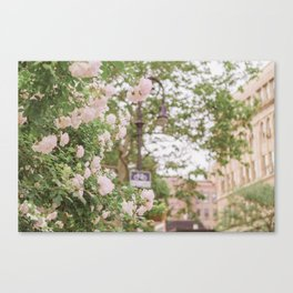 Roses Bloom in the Village Canvas Print