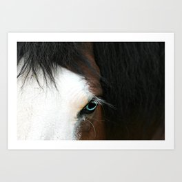 Coasack Horse Art Print