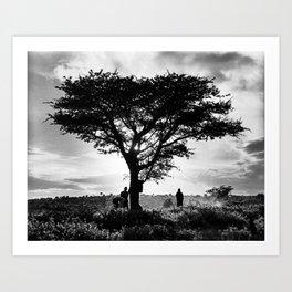 Maasai Acacia, Kenya  Art Print