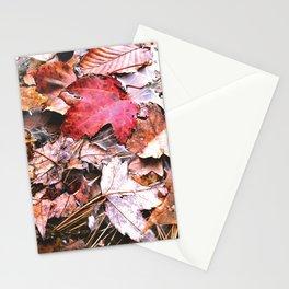 Brisk Autumn  Stationery Cards