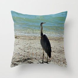 What It's All About Throw Pillow