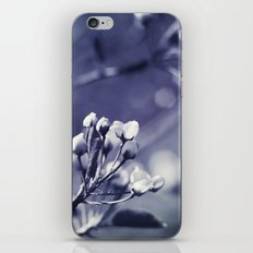 Spring in Black and White iPhone & iPod Skin