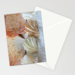 Seashells 2 Stationery Cards