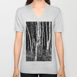 Little Cottonwood Canyon Aspen Trees Unisex V-Neck