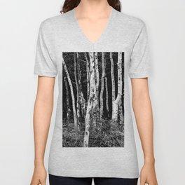 Little Cottonwood Canyon Aspen Trees Unisex V-Neck