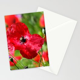 wild poppies Stationery Cards