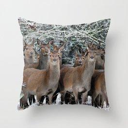 Herd Of Deer Throw Pillow
