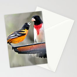 Food Fight: Oriole and Rose-breasted Grosbeak Stationery Cards
