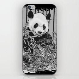 Panda Bear Cutie iPhone Skin