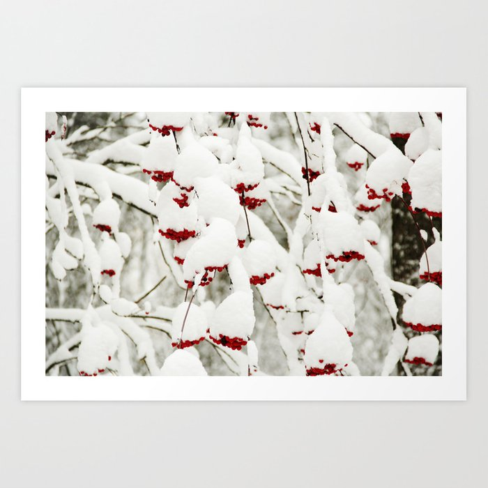 Red berries and snowy tree Art Print