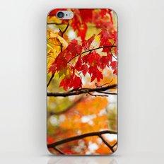 Autumn Bliss iPhone Skin
