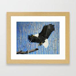 Bald Eagle-3 Framed Art Print
