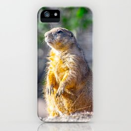 The Good Gopher iPhone Case