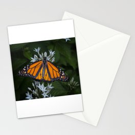 Monarch Butterfly Gathering Nectar Stationery Cards
