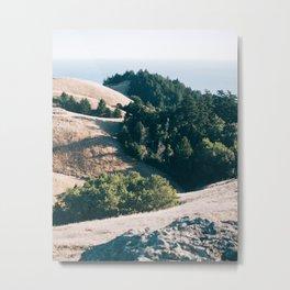 Antisocial Tree Club Metal Print