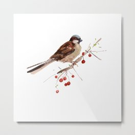 Cute sparrow Metal Print