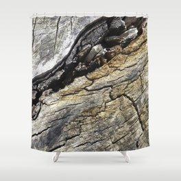 Fissure Shower Curtain