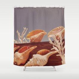 Souvenir Seashells Shower Curtain