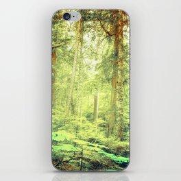 Morning Trees iPhone Skin