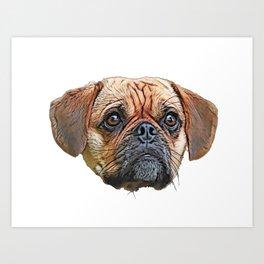 Puggle Beagle Pug designer breeders aim healthy companion Art Print