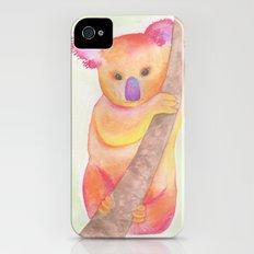 Colorful Koala iPhone (4, 4s) Slim Case
