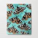 Tiger Moths by inkedinred