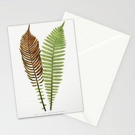 Merlans et algues papier peint Mouches et muguet etoffe de soie Hermine vulgaire bordure from Lanima Stationery Cards