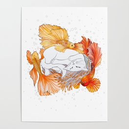 Cat and Golden Fishes Poster