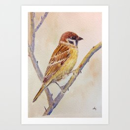 Watercolor sparrow illustration Art Print