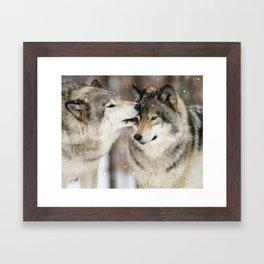 Wolf Kisses Framed Art Print