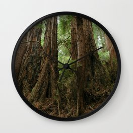 Muir Woods National Monument Wall Clock
