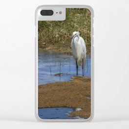 Snowy Egret of Chincoteague No. 3 Clear iPhone Case