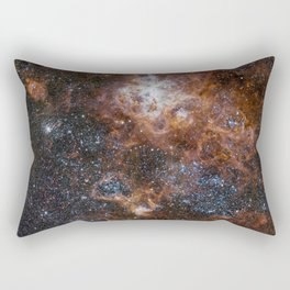 Tarantula Nebula in the Large Magellanic Cloud Rectangular Pillow