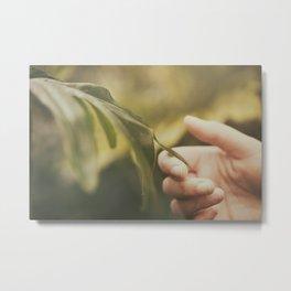 Natural harmony Metal Print