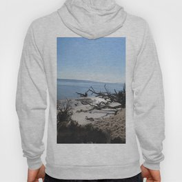 The Boney Trees on the Beach Hoody