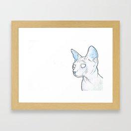 Hairless Cat (Blue) Framed Art Print