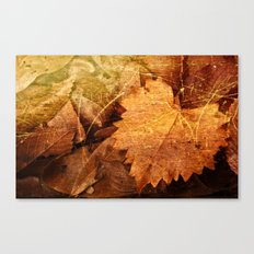 I heart Leaves Canvas Print