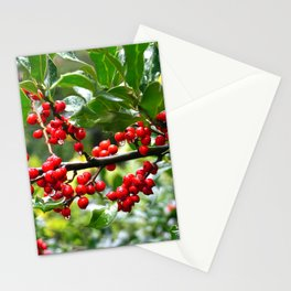 Holly - Red berries Stationery Cards