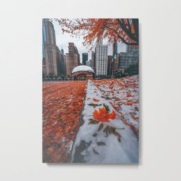 Fall and Winter Chicago Metal Print