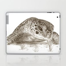 A Green Sea Turtle :: Earthtones Laptop & iPad Skin