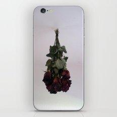 Hanging Roses iPhone & iPod Skin