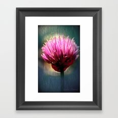 Pink focus Framed Art Print