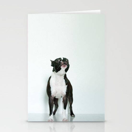 The Howler Stationery Cards