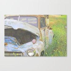 Maynard Canvas Print