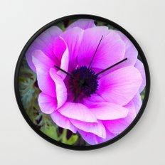 Pink Poppy Anemone I Wall Clock
