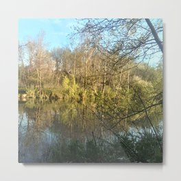 Nature and landscape 6 Metal Print