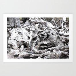 Just Driftwood Art Print