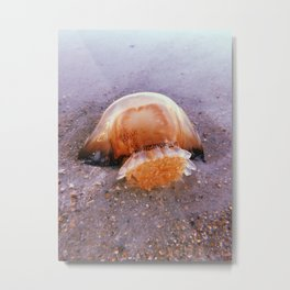 Spring Jelly Metal Print